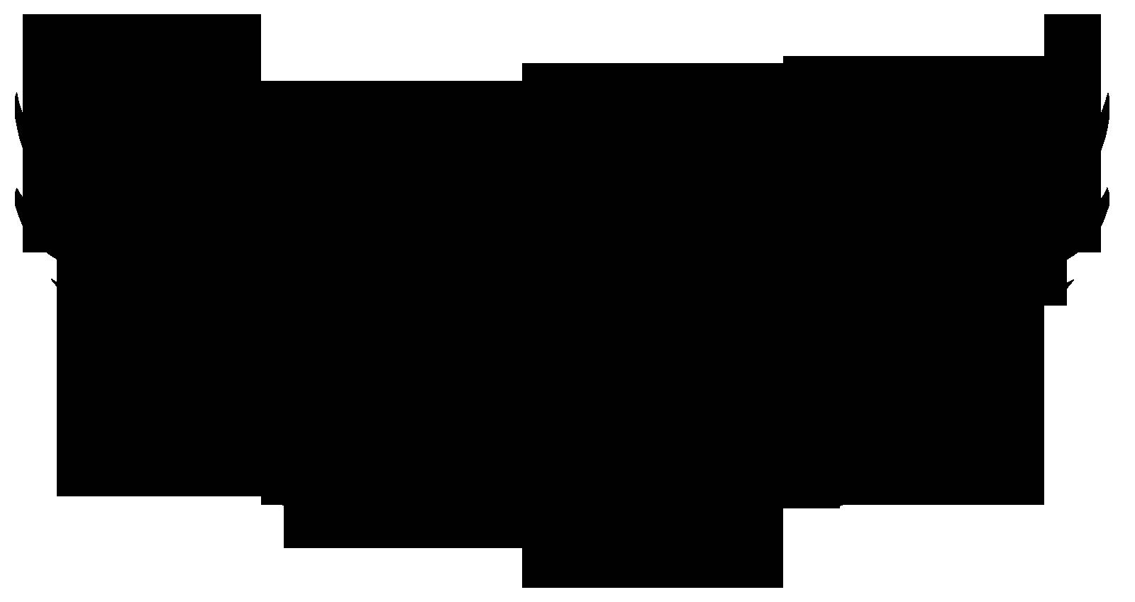 PB LOGO BLACK PNG